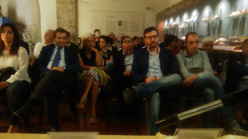 STATO E CRIMINALITA' - Roma, Catanzaro, Milano, Firenze, Cremona, Varese, Reggio Calabria, Napoli, Strongoli, Decollatura, Salerno - 2014-2015